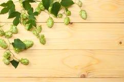 Piwnego piwowarstwa składniki Podskakują na lekkim drewnianym stole Piwny browaru pojęcie tła piwo zawiera gradientową siatkę Odg Obraz Royalty Free
