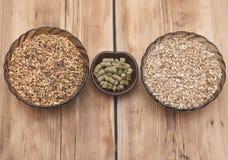Piwni składniki, chmiel i słód, fotografia stock