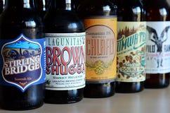 Piwny konkurs - przypadkowy piwny wybór Obrazy Stock