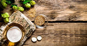 Piwny styl Szkło piwo na brzoza stojaku, słód i podskakuje na drewnianym tle Zdjęcia Stock