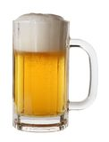piwo Obraz Stock