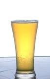 Piwo. Obrazy Stock
