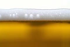 Piwo Obrazy Stock