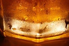 piwo Zdjęcia Stock