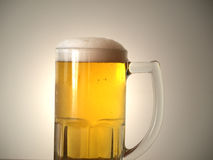 piwo chłodno Obraz Royalty Free