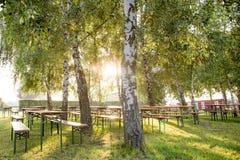 Piwo ogród w świetle słonecznym pod drzewami Obrazy Stock