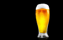 Piwo Szkło zimny piwo z wodnymi kroplami Fotografia Royalty Free
