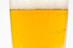 Piwo w szkle Zdjęcia Royalty Free