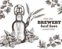 Piwo wektorowa ilustracja Surowy materiał dla warzyć: gałąź butelka i chmiel Karczemny menu Set royalty ilustracja