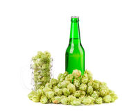 Piwo z piwnym szkłem i chmielem Fotografia Royalty Free