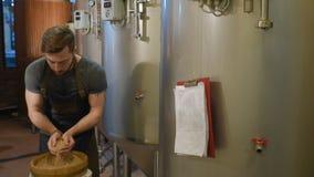 Piwowar z słodem na tle browar zbiory wideo