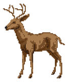 Pixel art deer illustration Royalty Free Stock Photos