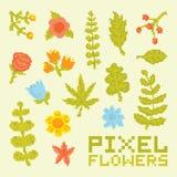 Pixel art  flowers vector set Royalty Free Stock Photos