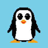 Pixel art penguin  illustration Stock Photos