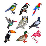 Pixel birds for games icons vector set Stock Photo