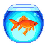 Pixel goldfish in fishbowl  vector. Pixel goldfish in fishbowl detailed  vector Stock Images