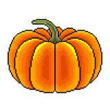 Pixel grote pompoen gedetailleerde illustratie geïsoleerde vector vector illustratie