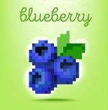 PIXEL-konst stilaffisch med blåbärfrukt på ljus - grön backg vektor illustrationer