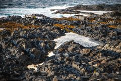 Pixel-like sharp stones on the beach of Barets Sea stock photography