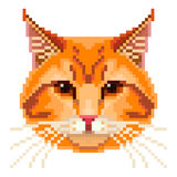 Pixel red cat face  vector Stock Photography