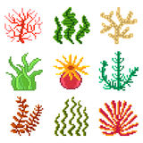 Pixel seaweed for games icons vector set Royalty Free Stock Photos