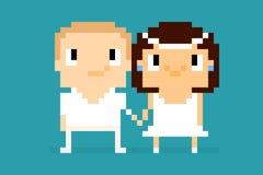 Pixel Wedding Stock Photography