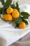 Pixie Tangerines Stock Photography