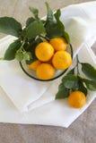 Pixie Tangerines Stock Images