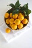Pixie Tangerines Royalty Free Stock Photo