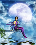 Pixie under the moonlight Stock Photography