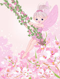 Pixy Fairy on a Swing Royalty Free Stock Photography