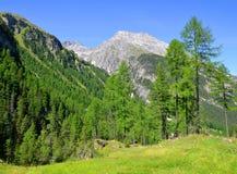 Piz Ela in Switzerland Alps Stock Photo