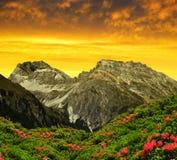 Piz Ela w Szwajcaria Alps Zdjęcia Royalty Free
