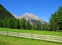 Piz Ela w Szwajcaria Alps Zdjęcia Stock