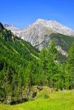 Piz Ela w Szwajcaria Alps Fotografia Royalty Free