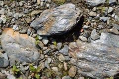 Pizarra brillante de la roca sedimentaria Fotografía de archivo