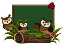 Pizarra con tres búhos ilustración del vector
