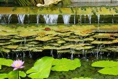 Pizarra de la cascada foto de archivo libre de regalías