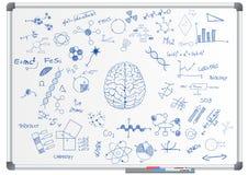 Pizarra de la ciencia de cerebro Imagen de archivo libre de regalías