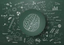 Pizarra de la ciencia de cerebro Fotos de archivo libres de regalías