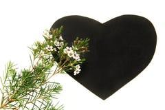 Pizarra en forma de corazón con las flores en la floración aislada en el fondo blanco foto de archivo libre de regalías