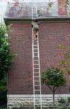 Pizarra que lleva del hombre encima de la escalera Fotos de archivo libres de regalías