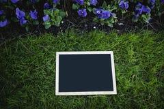 Pizarra vacía sobre hierba verde Fotografía de archivo