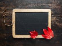 Pizarra y hojas de otoño en blanco Foto de archivo