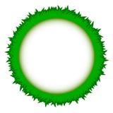 Pizca abstracta del vector del marco del círculo de la hierba verde libre illustration