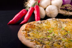 Pizza. And dried decoration. Shot in studio stock image