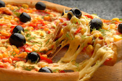 Pizza. The Italian pizza from a salami cheese, olives and cheese stock image
