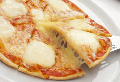 Pizza. Appetizing pizza on a white plate Stock Photography