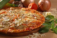 Pizza. Italian pizza with chicken vegetable toping stock photos
