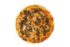 pizza Arkivbild